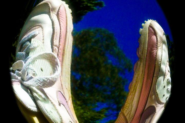 Nike in trees
