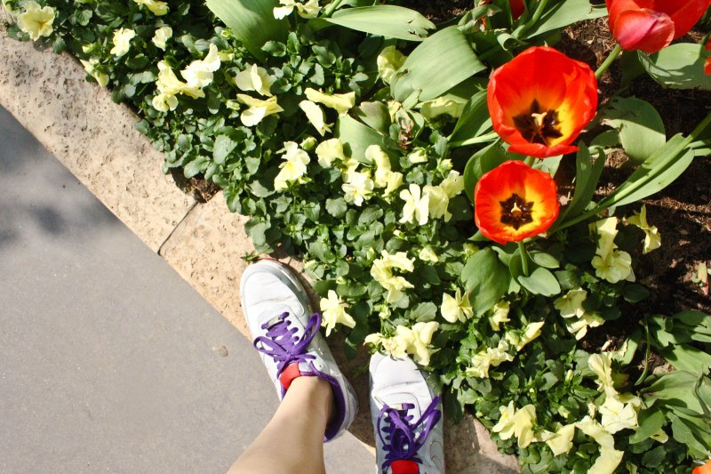 flowers and Nikes