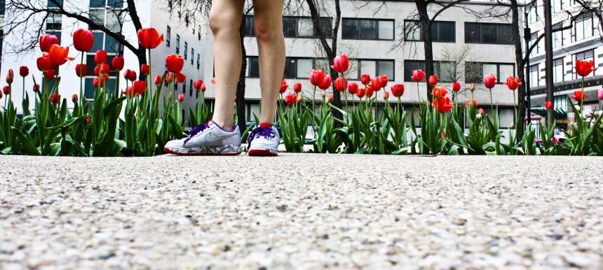 Nikes and tulips
