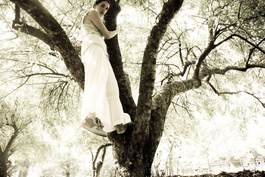 nike tree love