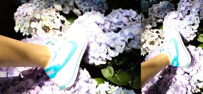 hydrangeas in Nikes