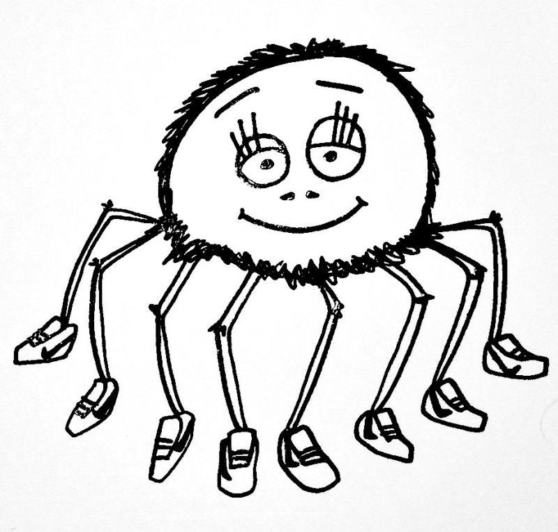spiders and shoes