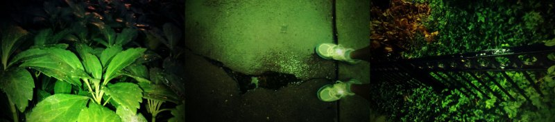 Nikes and puddles
