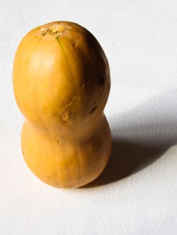 painted butternut squash