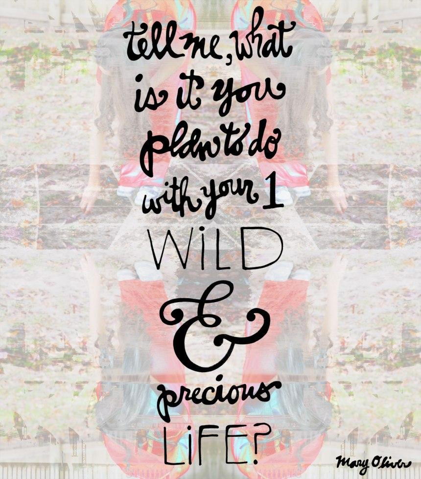 Precious, Wild Life