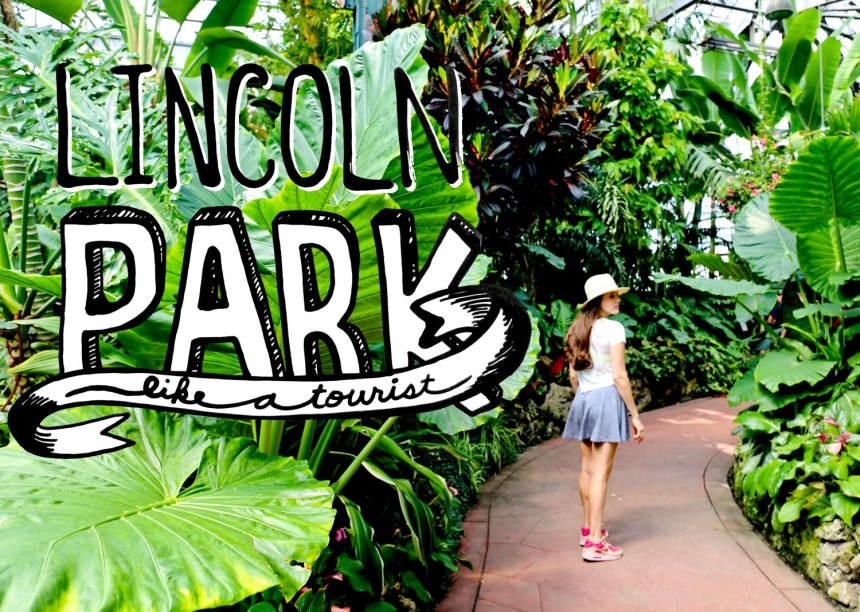 Lincoln Park like a tourist / for the love of nike