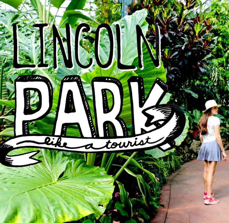 Lincoln Park like a Tourist