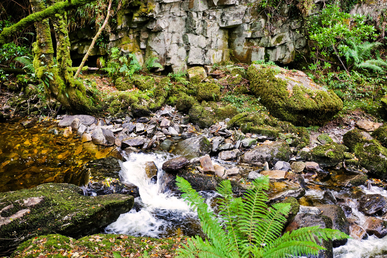 Killarney, Ireland / for the love of nike