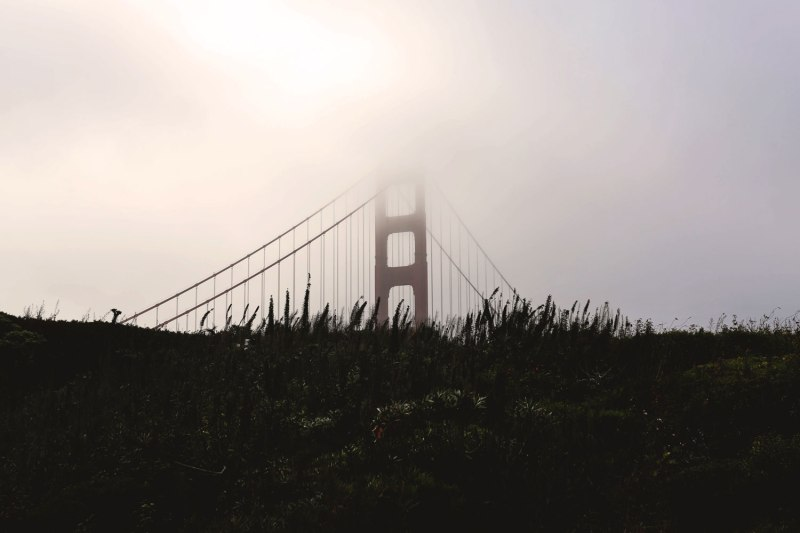 Sneakers in San Francisco / for the love of nike