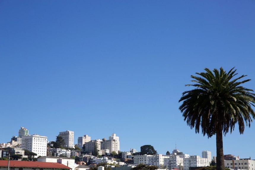 California Dreamin' / for the love of nike