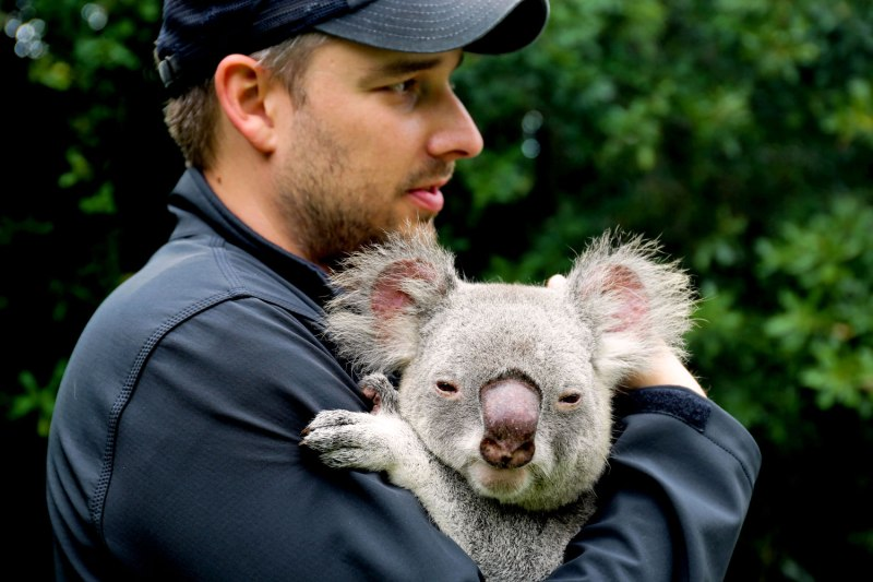 The Australia Zoo / for the love of nike