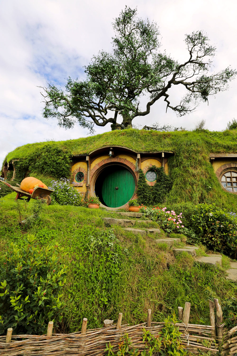 Nikes in Hobbiton / New Zealand / for the love of nike
