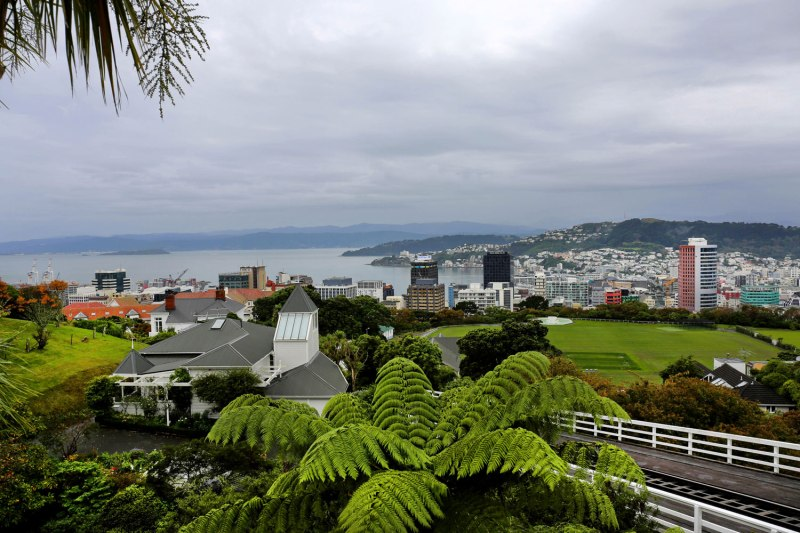 Wellington, New Zealand / for the love of nike