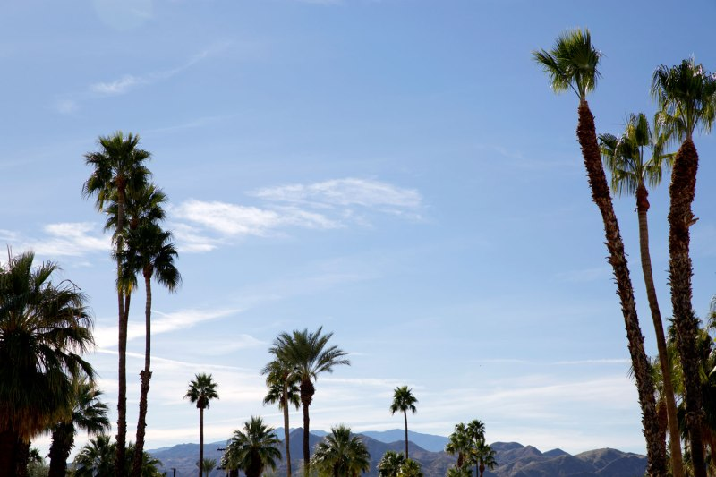 A Weekend in Palm Springs / for the love of nike