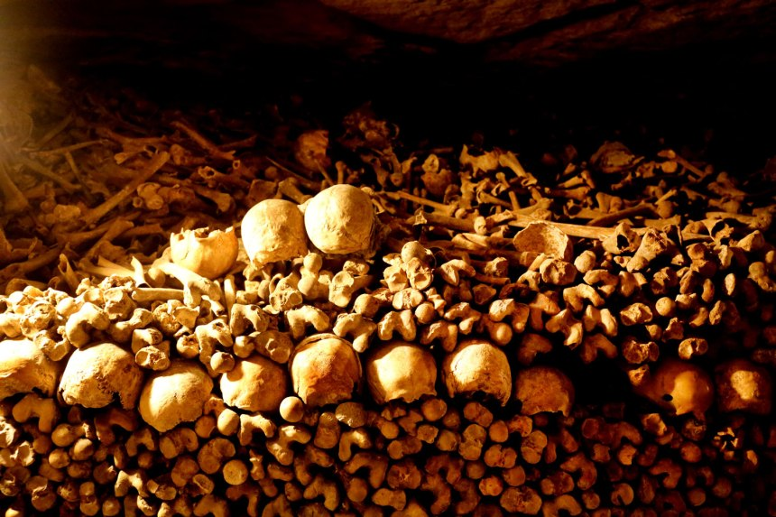 The Catacombs of Paris / for the love of nike