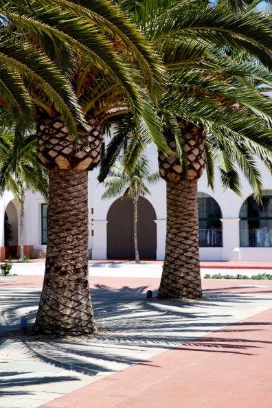 Santa Barbara / for the love of nike