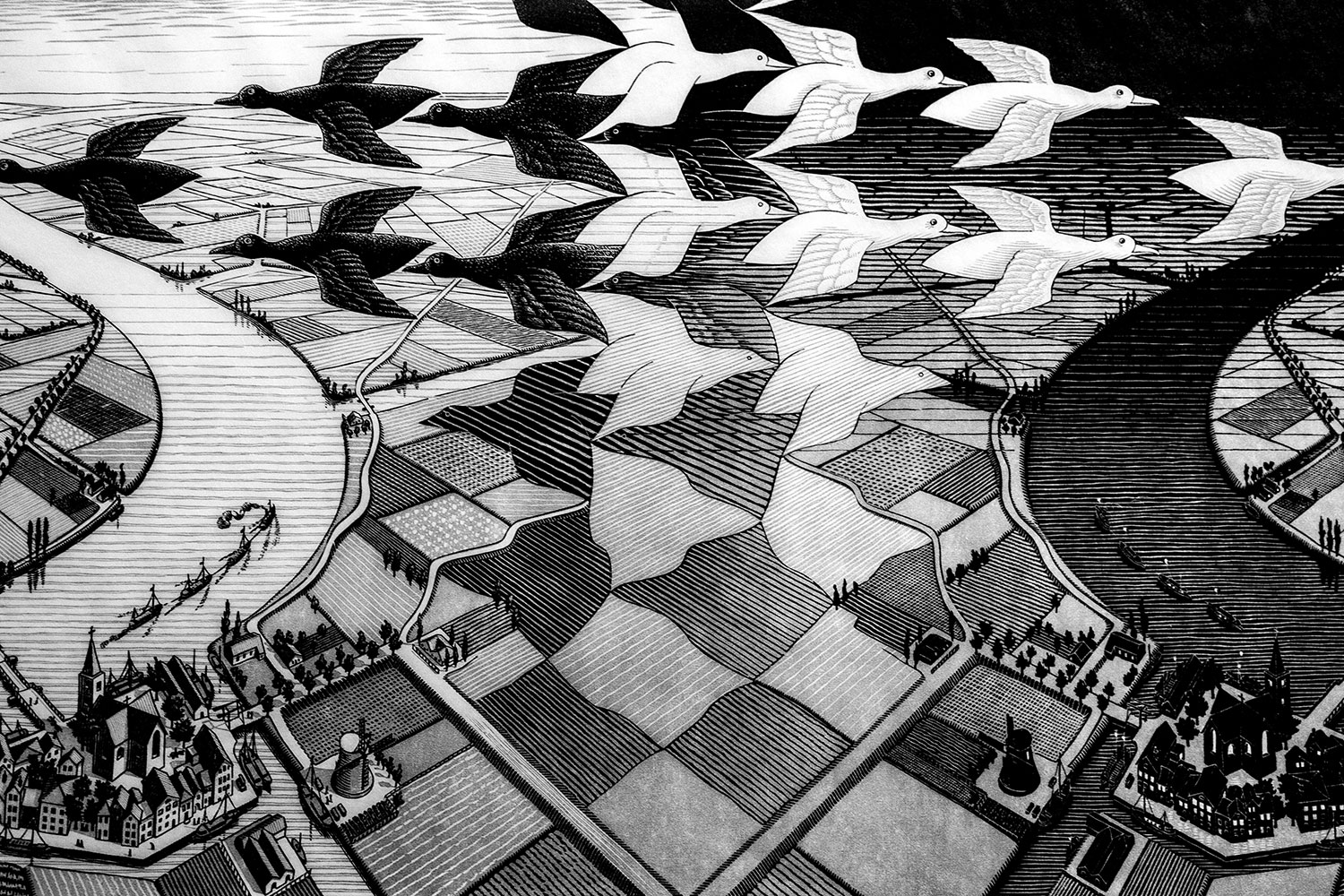 M. C. Escher / for the love of Nike