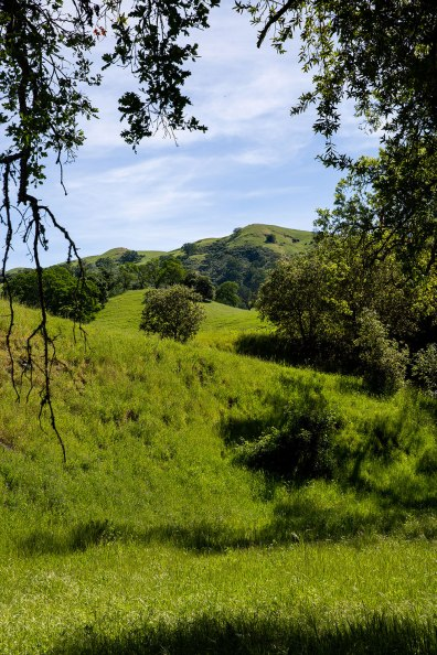 Sunol, California / for the love of nike