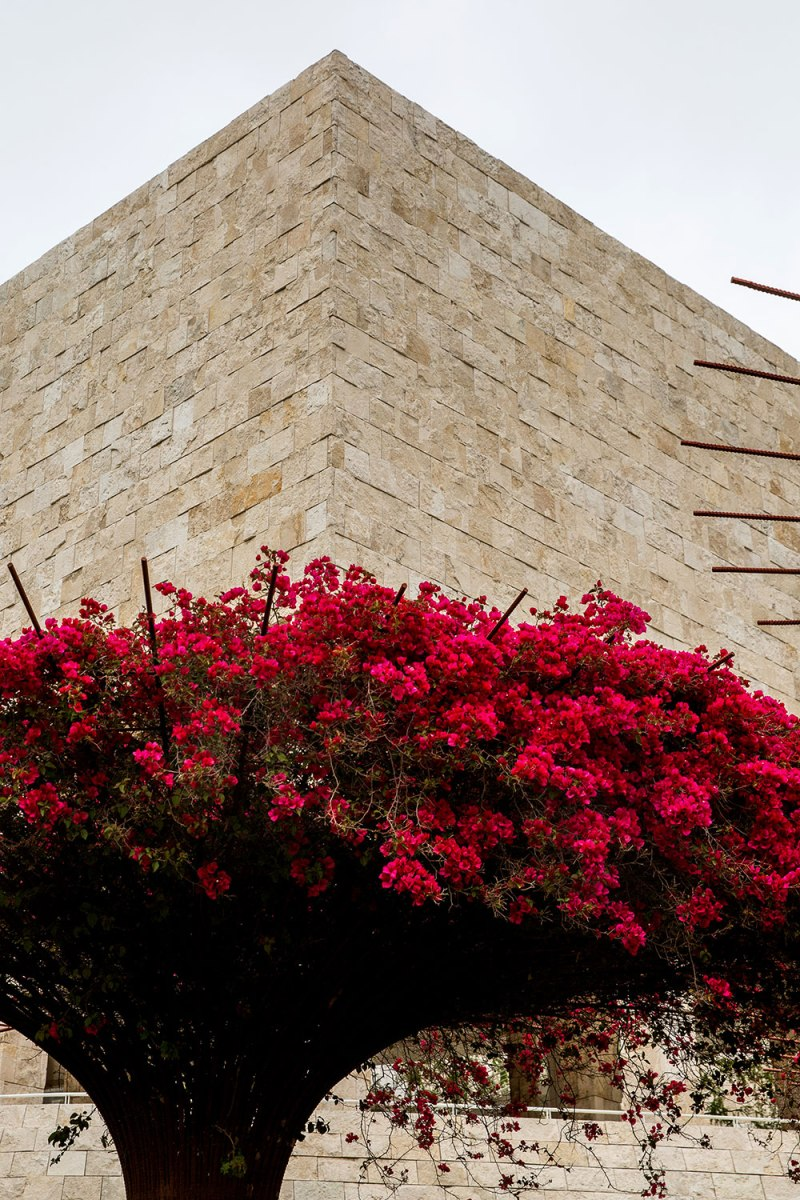 The Getty Museum, Los Angeles / for the love of nike