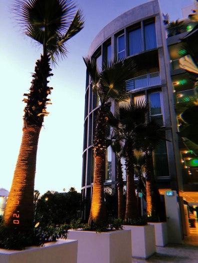 Exploring Santa Monica / for the love of nike