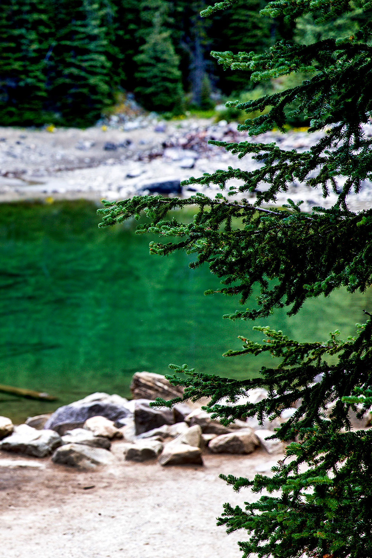 Exploring Banff National Park / for the love nike